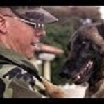 Dogs' Unconditional Love: Welcoming Soldiers Home